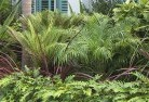 Abbeyard Tropical landscaping 2